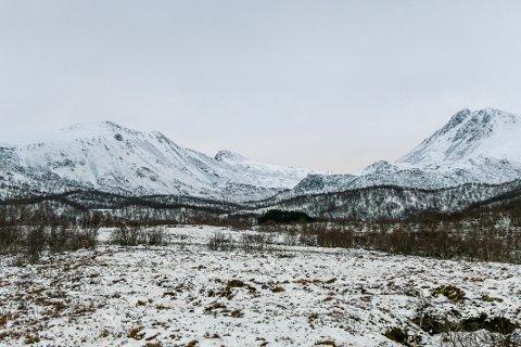 I dette området ligger hytta hvor fem personer er savnet etter en brann i Risøyhamn i Vesterålen natt til lørdag.