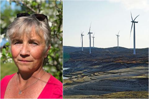 MARKERER MOTSTAND: Hanne Ingrid Trones har sendt inn et innbyggerforslag mot vindkraft til kommunen. Oppropet er signert av 968 personer.