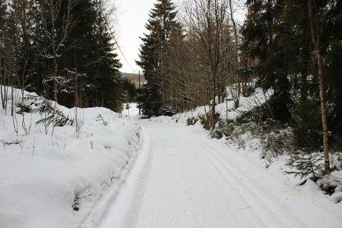 FINE LØYPER: Skiløypene i Horten kommune er fortsatt fine.