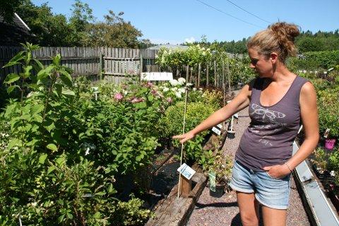 TØRKE: Ida Johansen kommer med ulike tips til hvordan du kan hjelpe å ta vare på plantene dine i sommervarmen.
