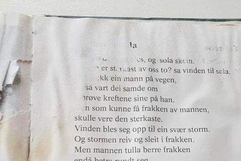 Slik så den ene leseleksa til Tobias (8) i 2. klasse ved Ålgård skole ut.