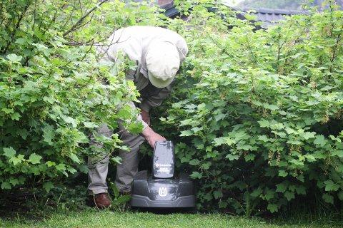 Henry Tendenes har aldri hatt finere plen. Eller mindre snegler i hagen.