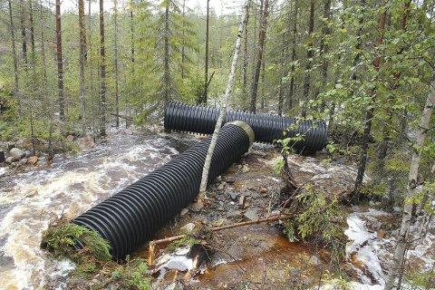 Mye vann: Det er fortsatt mye vann i bekker og myrer på Vestmarka.