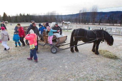 Stemning på Klokkertunet: Det blir ikke julemarked uten at Ole-Viktor Larsen er der med hesten Bron og kjører tur med små og store barn.