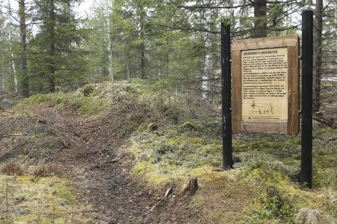 SKADE: Et kulturminne ved Risbekkoia fikk skader under skogsdrift. Etter befaring, viser det seg at skadene er minimale.