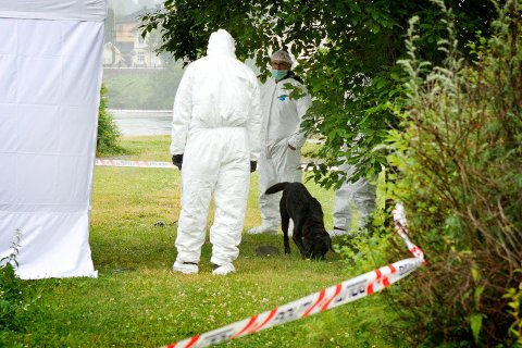 Politiet har sperret av et område i Mølleparken.