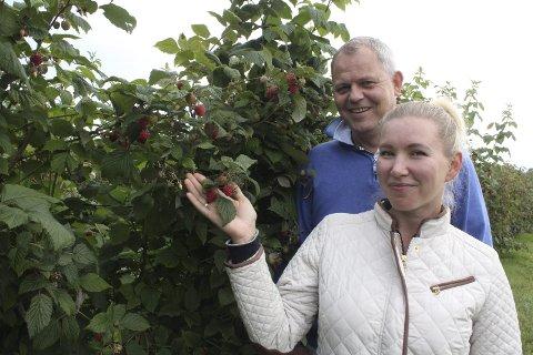 Bringebær: Jurate og Oddgeir Frette har flere kilometer med bringebærhekk i Hof-Åsa, og satser friskt hjemme på gården.