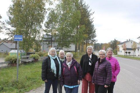 VENTER: Innbyggerne på Finnskogen ønsker buss til og fra Kirkenær. Slik det er nå, er det lite distriktsvennlig, mener de.