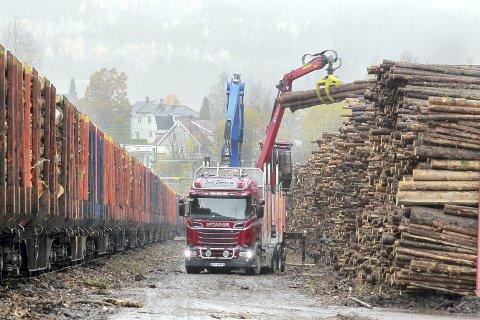 KAPASITETEN SPRENGT: Tømmerterminalen på Norsenga er blitt en flaskehals i tømmertransporten på det indre Østlandet. Problemet er at det er trangt om plassen, og sterke krefter i skognæringen mener at det haster med flytting av terminalen nordover – i tillegg til at det trengs større areal. Nå arbeides det for å få omprioritert