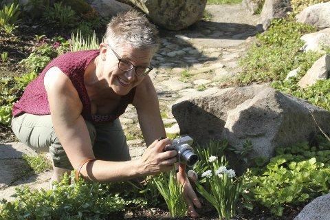 Dokumenterer: Beate Banken Bakke dokumenterer både blomster og insekter med kameraet. Damene på Leiråker merker et yrende insektsliv, og ønsker dem alle velkommen. Bilder: Kenneth Mellem