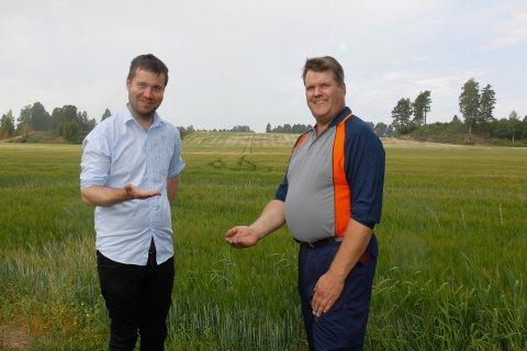 REGN: Det kom noen dråper da Geir Pollestad (Sp) gikk i åkeren hos Kjell Erik Kordal. Han mener at Sp får med seg Stortinget på å etablere beredskapslager for matkorn.