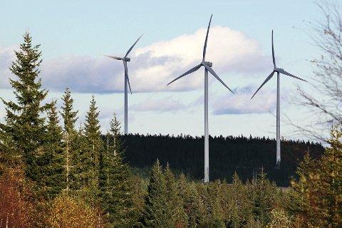 POLITIMØTE: Tilhengere og motstandere av vindkraftutbyggingen i Nord-Odal vil dempe konfliktnivået.