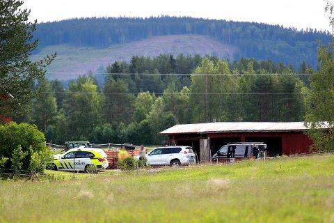 En sauebonde fra Sander skjøt og drepte en ulv på innsiden av gjerdet hvor sauene gikk og beitet tirsdag morgen. En time seinere var politiet på gården for å etterforske hendelsen.