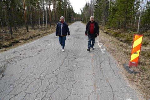 MYE DÅRLIG VEG: Anne Berit Myrvold og Per Roar Bredvold så på fylkesveger i svært varierende tilstand.