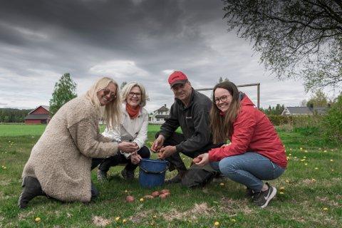 Mariann Tveter (t.v.) har fått landbrukssjef Anne Kristine Rossebø, Camilla Bye fra forskermiljøet og potetprodusent Ivar Sund med på pottis-prosjektet.