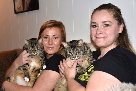 Cathrine Sønsterud Rinden og Karoline Kluge bruker mye fritid på å ta vare på hjemløse katter.  Nå trenger de et sted hvor kattene kan tas imot, og har startet en spleis for å realisere et mottak.