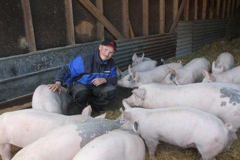 GOD BESETNING: Aksel Weldingh sine purker gir gode resultater for den unge gårdbrukeren på Snusjara. Han gikk til topps i Norsvin sin oversikt over beste purkebesetning.