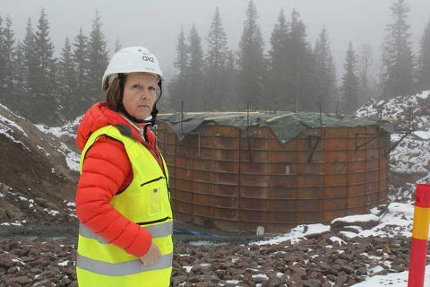 NY KAMP: Bente Rudberg, her i Kjølberget, er klar for nye ny kamp mot bygging av vindturbiner, denne gangen litt nord for Höljes i Torsby.