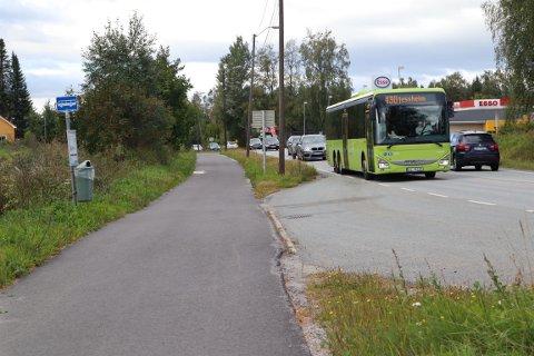 KASTET AV: Det skal være disse bussene, som kjører langs ruten 430 mellom Eidsvoll og Jessheim som har vært særlig utfordrende for familien.