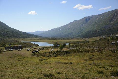 Vindmølle er greit i landskapsvernområdet i Finndalen i Finndalen i Vågå. Men ikke flaggstang, mener både Nasjonalparkstyret i Reinheimen og Miljødirektoratet. Her utsikt fra Odden lengst øst på grensa mellom Lom og Vågå.