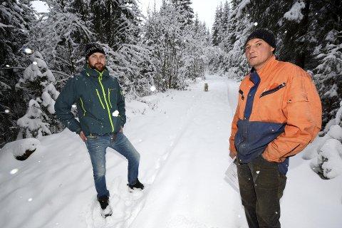 STORE SKADER: Skogeierne John Erik Vestad og Ola Nordrum merker godt at det er mye elg i Ringebu. – Den beiter for store verdier. Trærne som elgen knekker nå, gir ikke inntekt på hundre år.