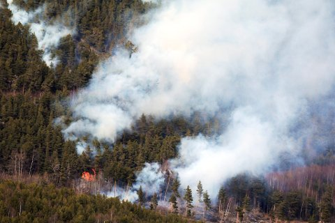 FORBUD: Sel kommune innfører ekstreme tiltak for å hindre flere branner i kommunen. Bildet viser skogbrannen som herjet i Vågå i april.