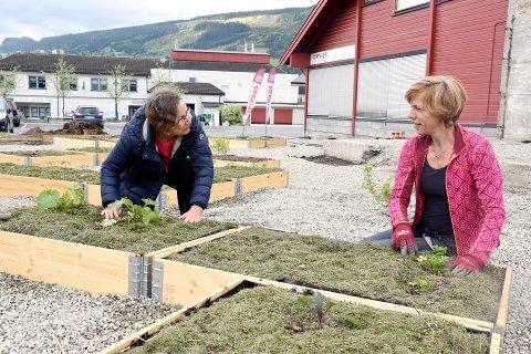PYNTER opp: Amanda Graafland (t.h) har laget en flott hage i sentrum av Ringebu. Tomteeier Torunn Bjørge er fornøyd.