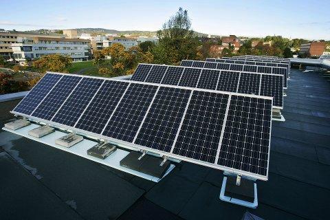 SOLENERGI: Nå vurderer Eidsiva å bygge innlandets første solcellepark. Tanken er at privatpersoner, bedrifter og kommuner kan kjøpe en andel, mot å få avslag på strømregningen. Illustrasjonsfoto: Erlend Aas, NTB Scanpix