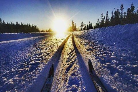 10. Skitur på Vingeromsåsen. Foto: Torunn Brandvold