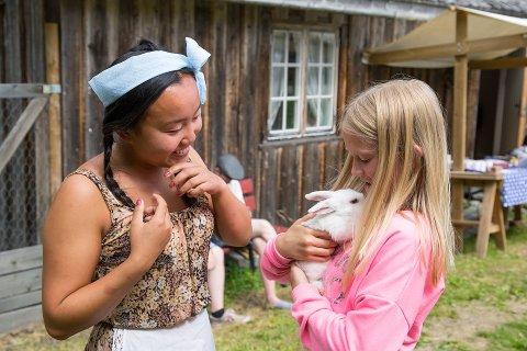 I PRØYSENLAND: Blåklokkevikua er mer enn kjente artister. Kos, hygge og idyll er like viktig under Prøysenfestivalen. Ill.foto