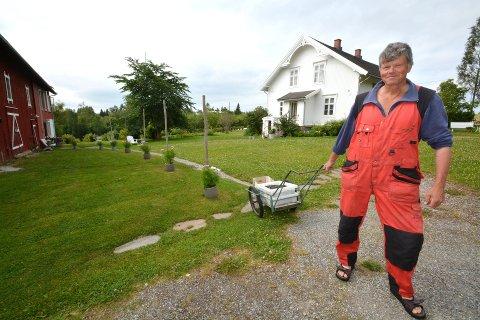 Norges Spiskammers: Nes og Helgøya har et spesielt godt jordsmonn. Helge Hvoslef har 2.000 økologiske solbærbusker.