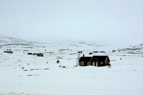 KONFLIKT: Ringebu kommune vil gi klarsignal til utbygging av hytter i randsonen til villreinens leveområder i Rondane-Sølnkletten - her fra Venabygdsfjellet. Det er konfliktfylt.