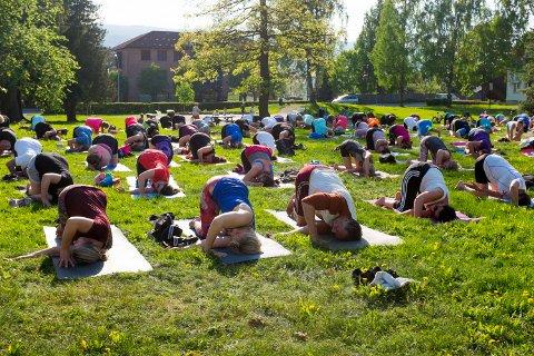"""Onsdag ble årets første utgave av """"Yoga i parken"""" arrangert i Nordre Park på Lillehammer."""