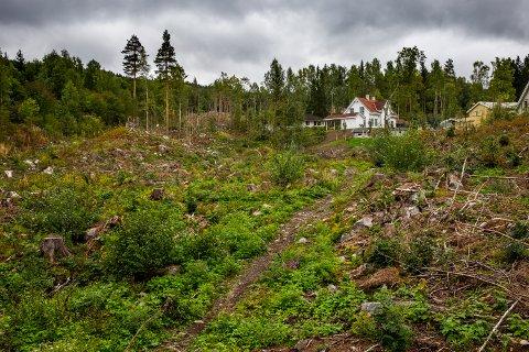 På denne fire og et halvt mål store tomta skal Maihaugen bygge opp en ny bydel innen Lillehammers 200-årsjubileum i 2027.