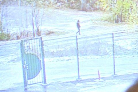 Videoklipp som viser en av fotgjengerne utenfor Tom Hagens arbeidsplass på Lørenskog 31. oktober i fjor og som politiet etterlyser i forbindelse med at Anne-Elisabeth Hagen er antatt bortført. Foto: Fredrik Hagen / NTB scanpix