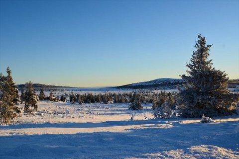 Det tok ikke mange timene før fem av seks hyttetomter skiftet eier på Storåsen ved Kroksjølia.