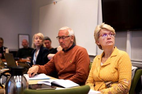 Påtroppende ordfører i Sel, Eldri Siem (Sp) vil ha en felles uttalelse fra kommunene i midt- og norddalsregionen om forslaget til ny kraftskatt.