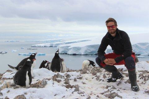 Audun Narvestad med bøylepingviner på Kopaitic Island i Antarktis.