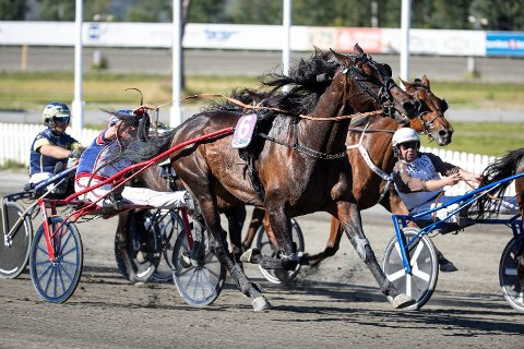 Hest er best. Heretter kan du se V75-løpene på rha.no