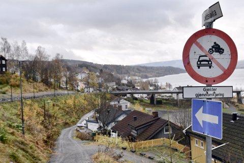 Skråningen mellom Bryggevegen og Voldsløkka skulle vært klippet og stelt av kommunen, mener beboeren som sendte klagebrev til kommunen.