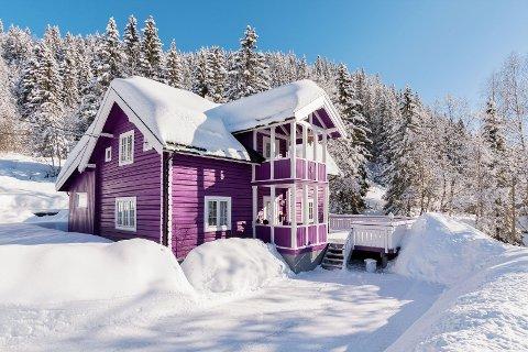 – Jeg så fargen lenge før jeg våget å male huset, sier Heidi Berg, som nå skal selge huset.