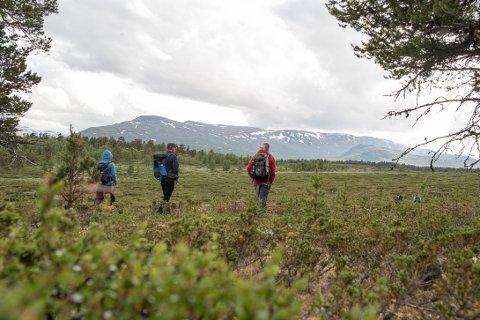Det er i dette området Den Norske Turistforening ønsker å bygge den nye turisthytta Dronningsetra. Den selvbetjente hytta skal knytte sammen Peer Gynt-stien og Jotunheimstien gjennom Skåbu.