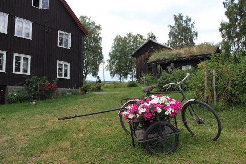 Sygard Toft i Follebu er en av gårdene som inviterer barn og ungdom i sommer.