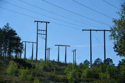 STRØM: EUs energipakke 4 betyr derfor i realiteten at norske myndigheter blir fratatt all styring over den nasjonale elektrisiteten og kraftmarkedet, skriver innsenderne.