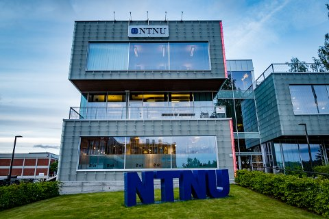 BRA SÅ LANGT: Fadderuka ved NTNU i Gjøvik er over halvveis og fadderleder Stian Offerdal Vatlestad mener det har gått bra så langt.