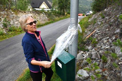 Maken til postkassehærverk er det få som opplever. Nå er Astrid Bekkemellem på Sandbumoen sør for Otta, lei - og har søkt Posten om å få flytte kassa.