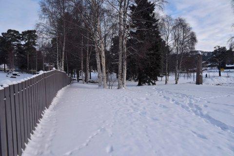 Det er planer om å bygge skatepark i Mineparken på Dombås. Minneparken ligger mellom E6 og kirkegården.