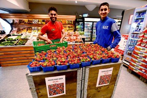Mesna Mat i Lillehammer fikk mandag 14. juni årets første norske jordbær. Her legger Morad Jamal og Agri Ari ut flere kurver.