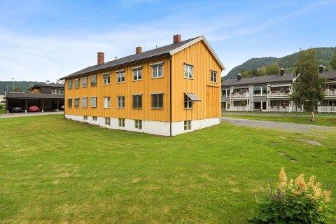 Den nye eieren har fått nesten 600 kvadratmeter å boltre seg på i tillegg til 1,7 mål tomt i Forset.