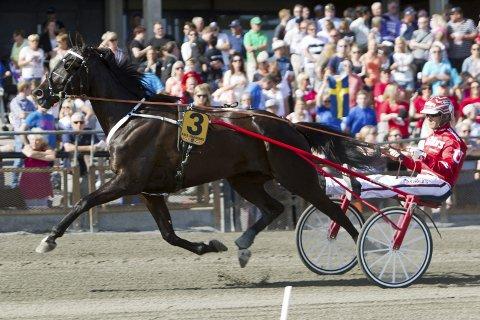 FAVORITT: B.B.S. Sugarlight vant fjorårets utgave av Olympiatravet og blir en av favorittene igjen. (Foto: Eirik Stenhaug/Equus)